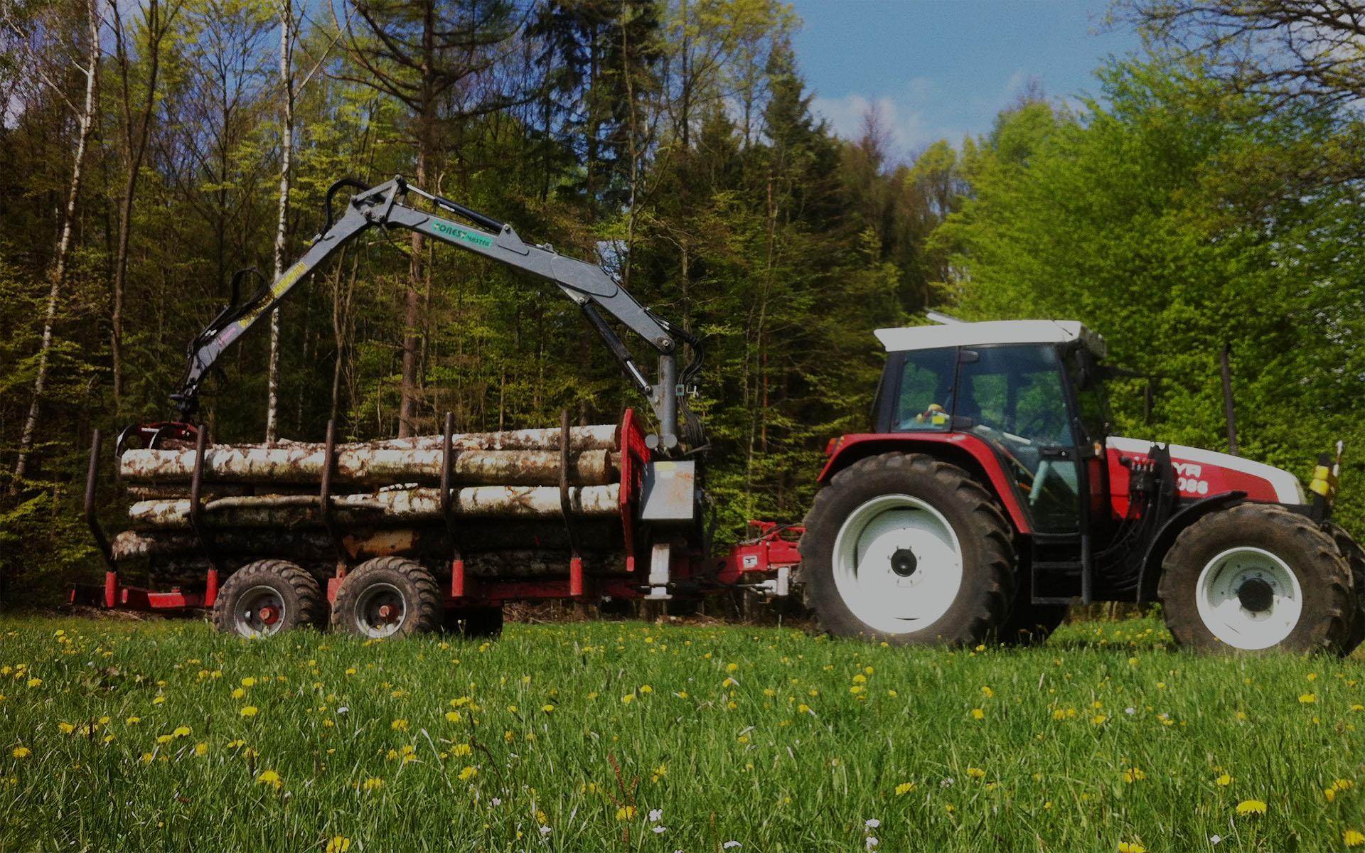Brennholz aus der fränkischen Schweiz