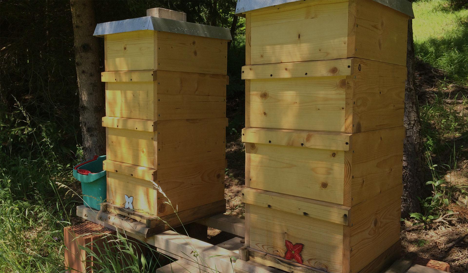 Honig aus der Fränkischen Schweiz